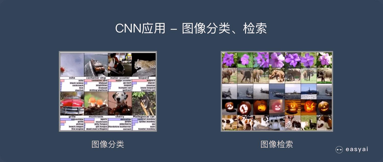 CNN应用-图像分类、检索