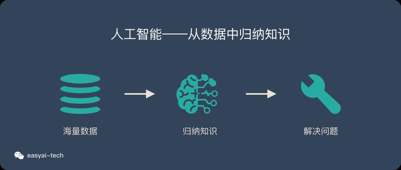 人工智能逻辑:从数据中归纳知识