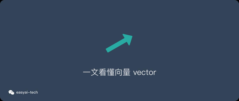 一文看懂向量vector